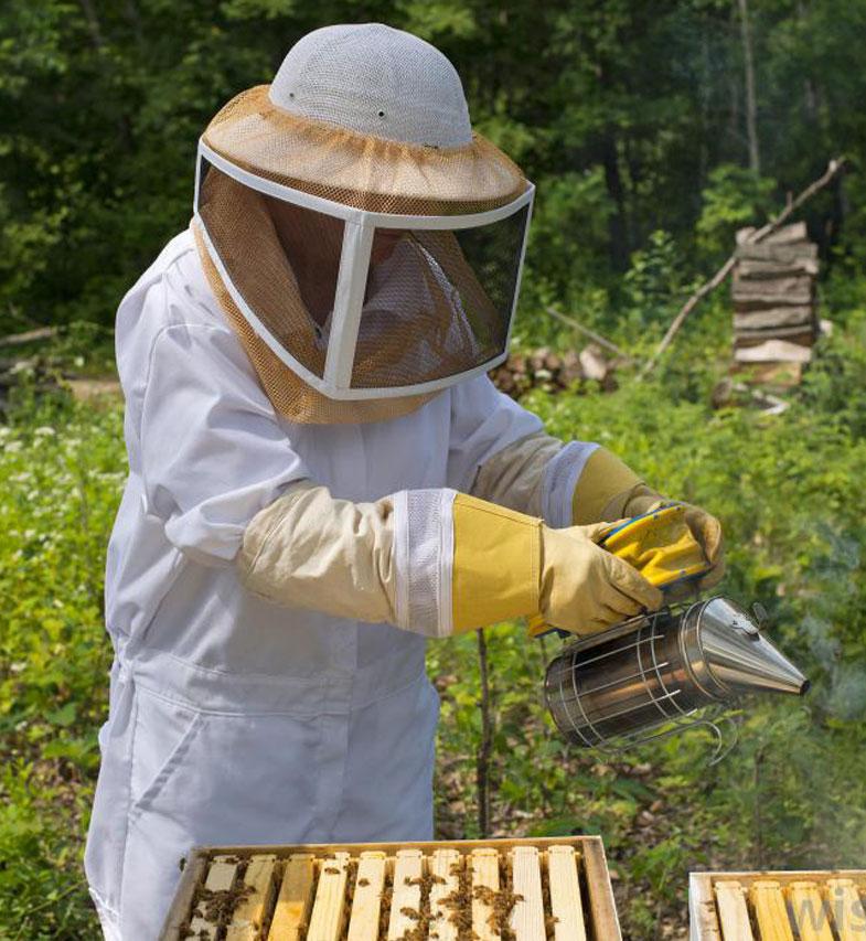 просмотра вам костюм пчеловода в картинках больной